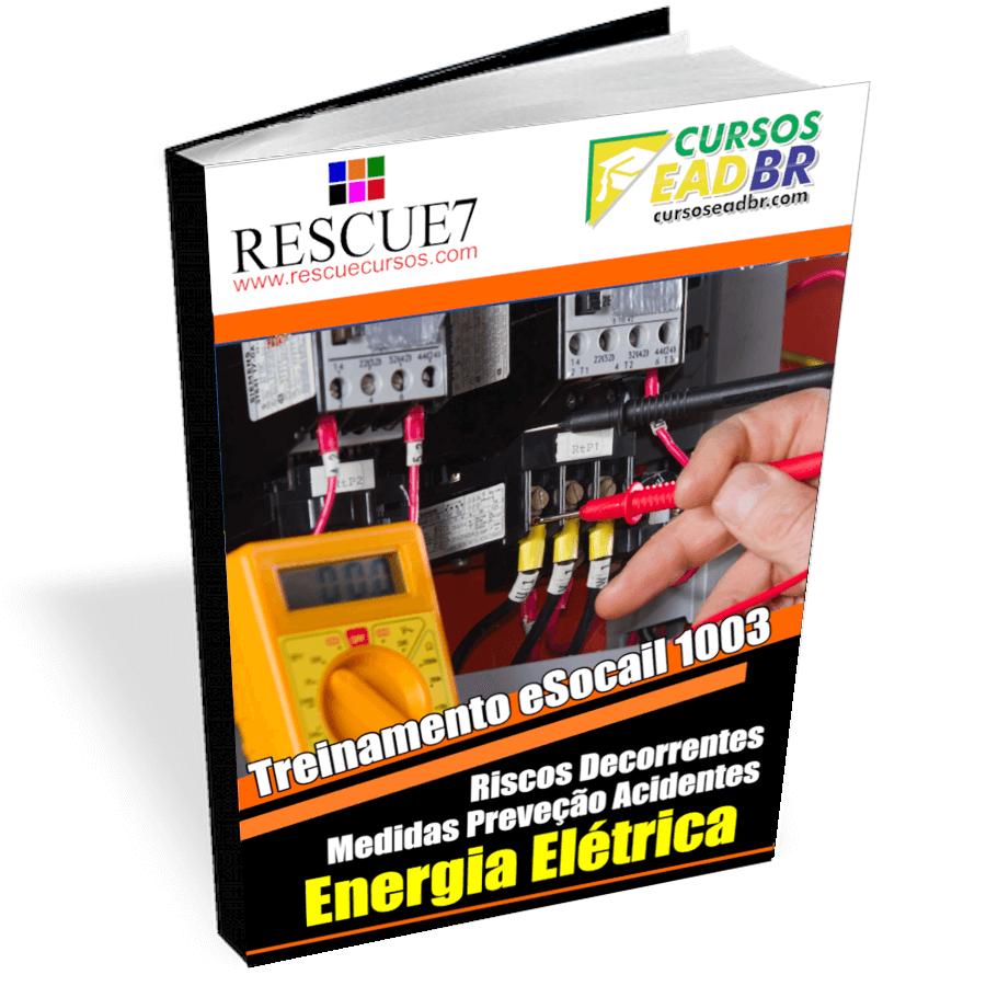 1003 – Treinamento Sobre os Riscos Decorrentes do Emprego da Energia Elétrica e Principais Medidas de Prevenção de Acidentes| EAD | Ao Vivo | Presencial | Online | 37779