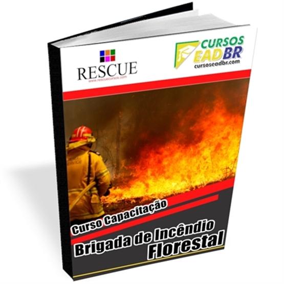 Curso Brigada Incêndio Florestal | EAD | Ao Vivo | Presencial | Online | 14745