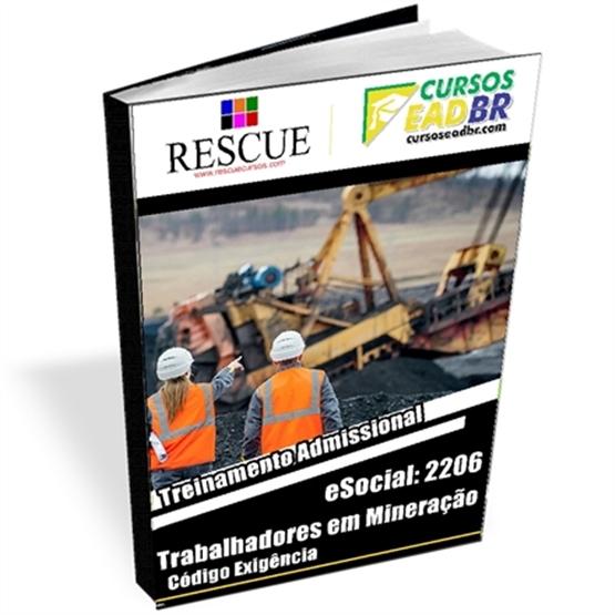 2206 - Treinamento Admissional Para Trabalhadores em Mineração | 51725