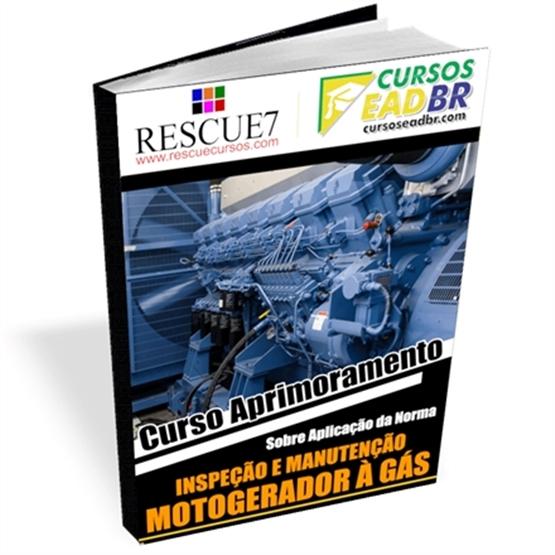 Curso Manutenção Grupo Motogerador | EAD | Ao Vivo | Presencial | Online | 111230