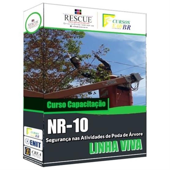 Capacitação NR 10 Segurança nas Atividades de Poda de Árvores em Linha Viva