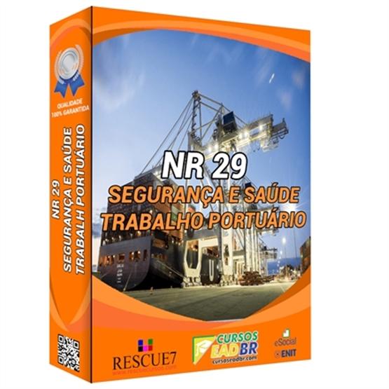 Curso NR 29 Segurança e Saúde no Trabalho Portuário | EAD | Ao Vivo | Presencial | Online | 64016