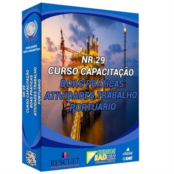 Boas Práticas nas atividades do Trabalho Portuário NR 29 | EAD | Ao Vivo | Presencial | Online | 162466