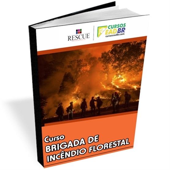 Curso Brigada Incêndio Florestal | EAD | Ao Vivo | Online | 14745